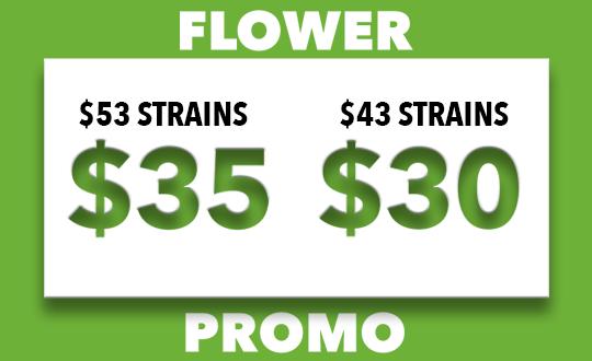2 Day Flower Promo