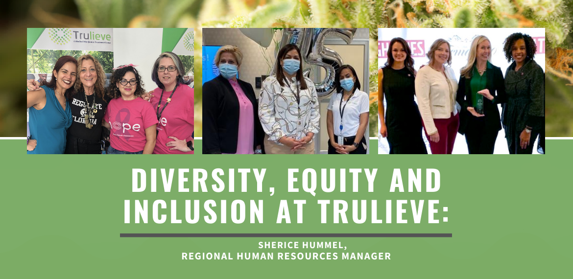 Sherice Hummel, Diversity, Equity, and Inclusion