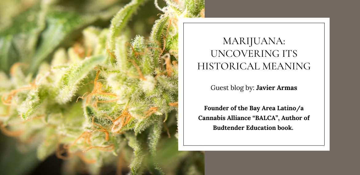 Marijuana: Uncovering Its Historical Meaning