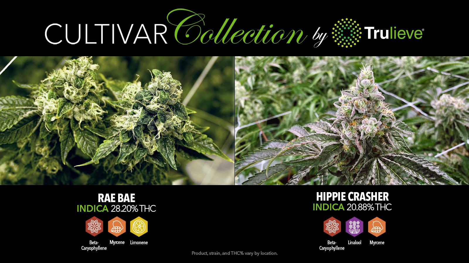 07/31 Cultivar Collection